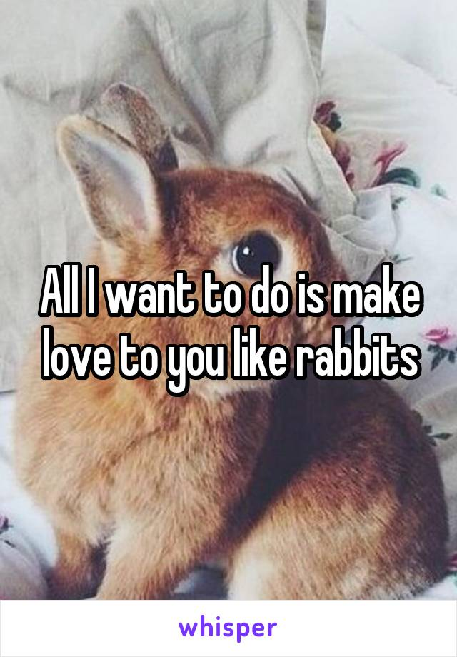 All I want to do is make love to you like rabbits