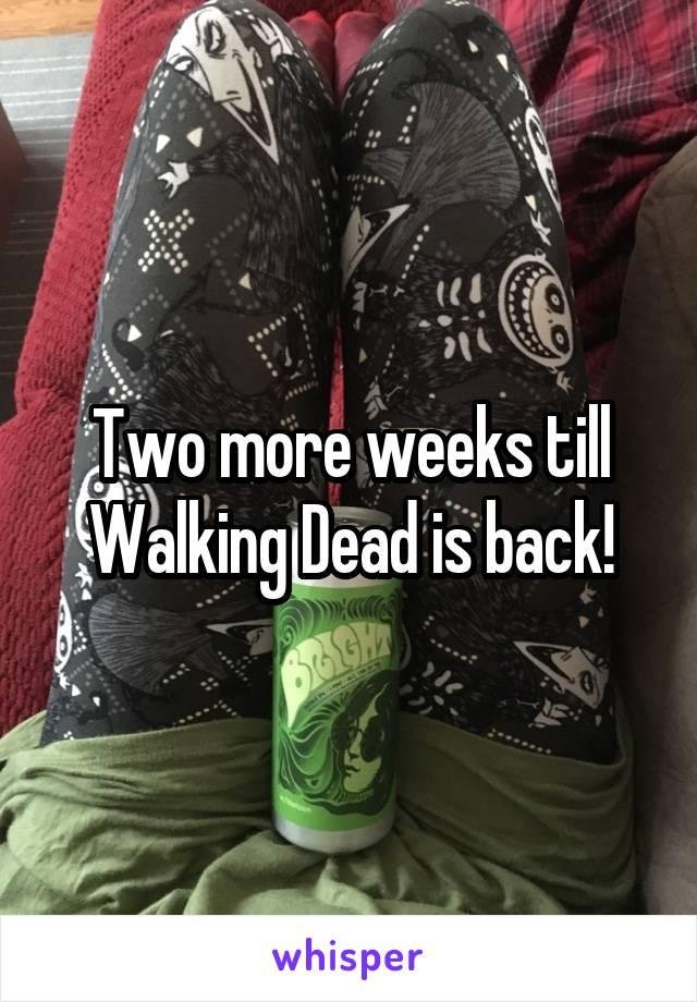 Two more weeks till Walking Dead is back!