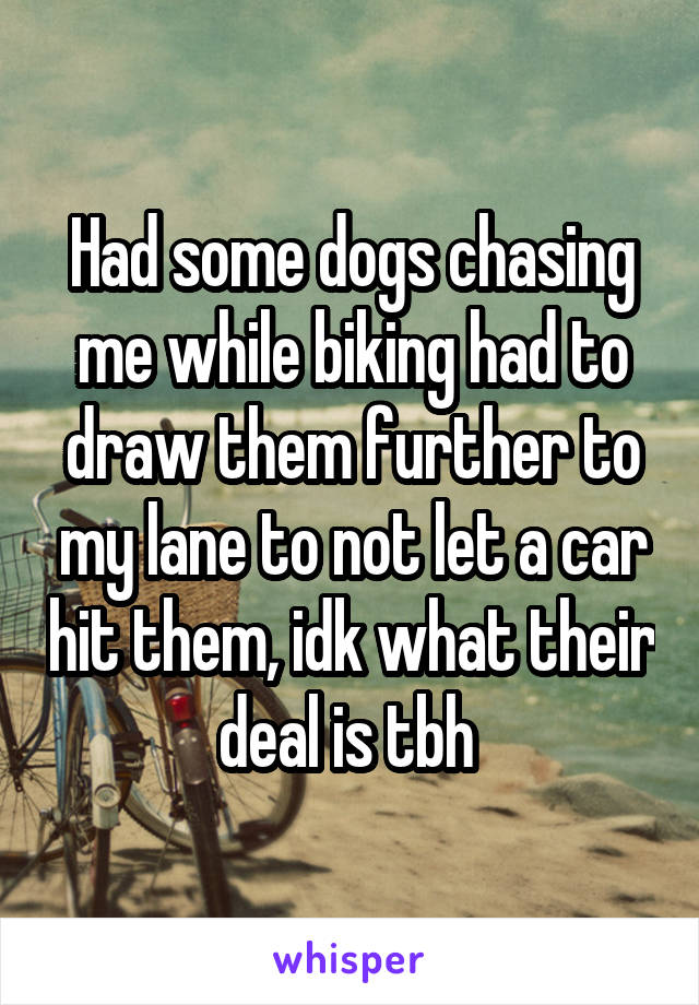 Had some dogs chasing me while biking had to draw them further to my lane to not let a car hit them, idk what their deal is tbh