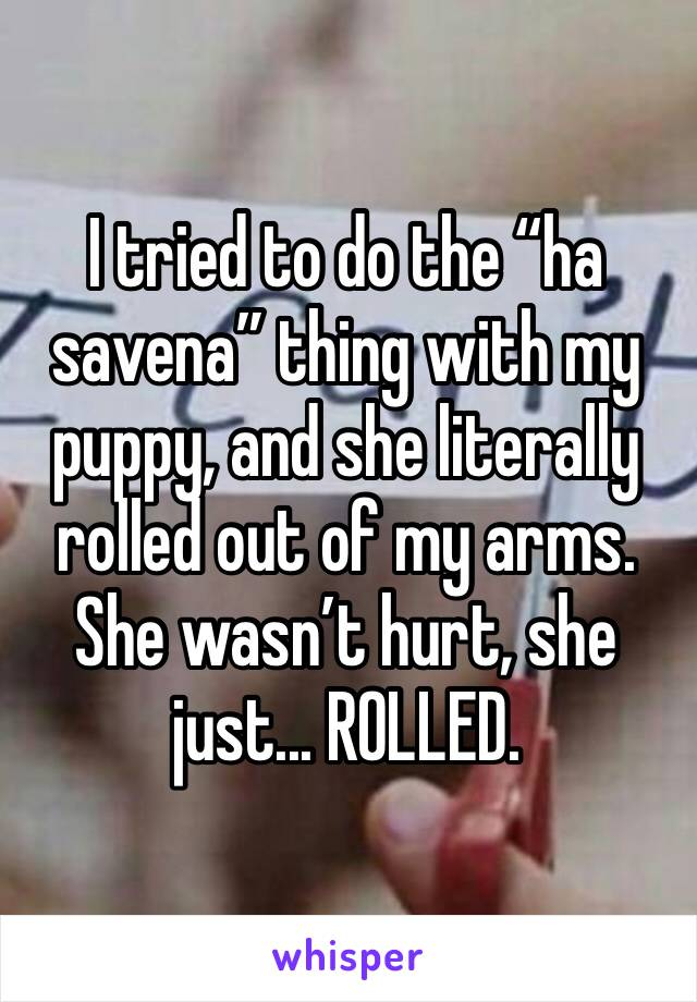"I tried to do the ""ha savena"" thing with my puppy, and she literally rolled out of my arms.  She wasn't hurt, she just... ROLLED."