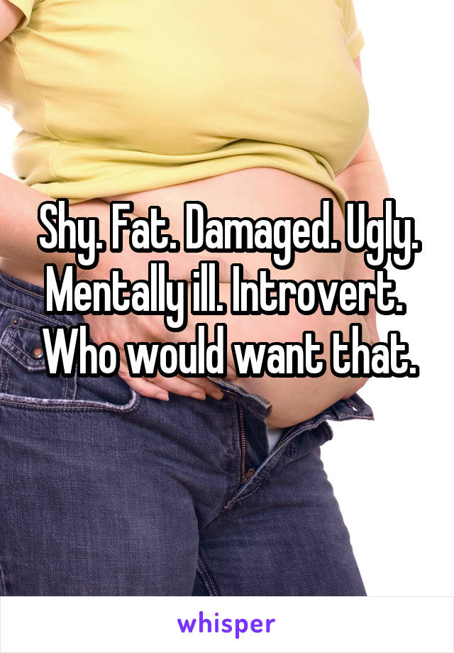 Shy. Fat. Damaged. Ugly. Mentally ill. Introvert.  Who would want that.