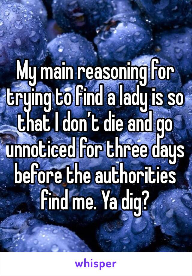 My main reasoning for trying to find a lady is so that I don't die and go unnoticed for three days before the authorities find me. Ya dig?