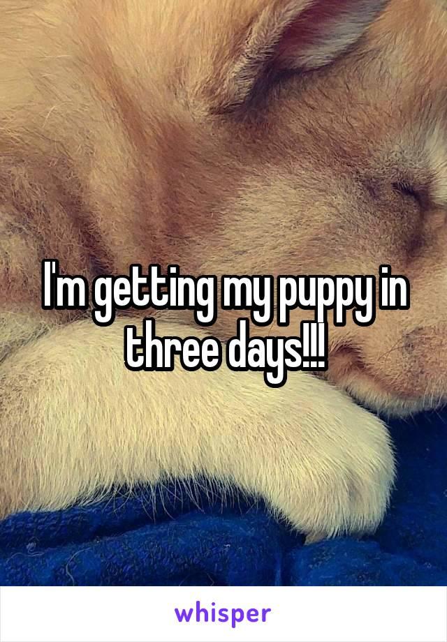 I'm getting my puppy in three days!!!