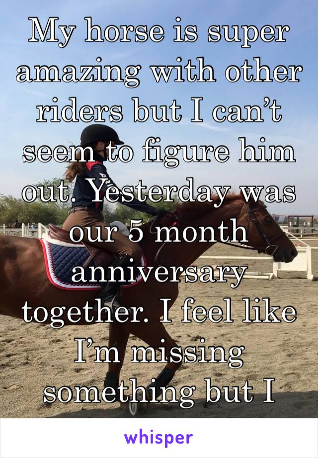 My horse is super amazing with other riders but I can't seem to figure him out. Yesterday was our 5 month anniversary together. I feel like I'm missing something but I don't know what.