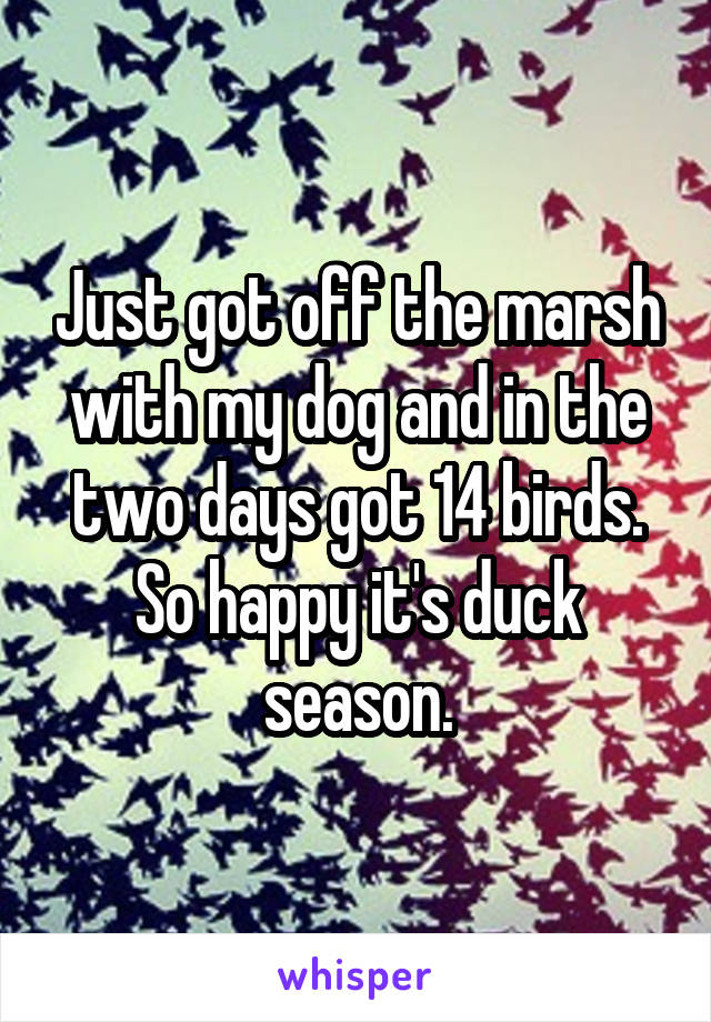 Just got off the marsh with my dog and in the two days got 14 birds. So happy it's duck season.