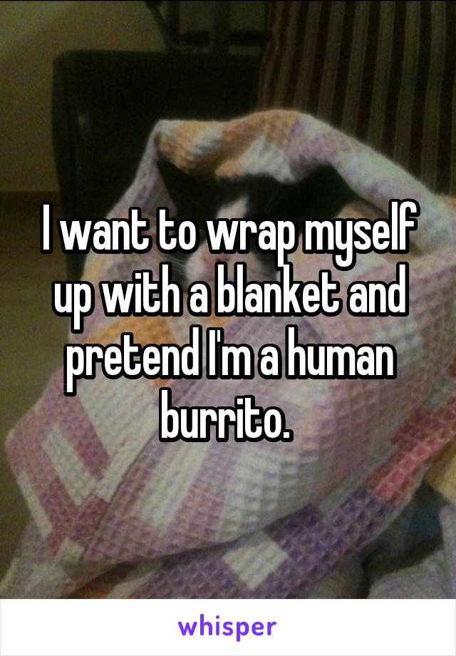 I want to wrap myself up with a blanket and pretend I'm a human burrito.