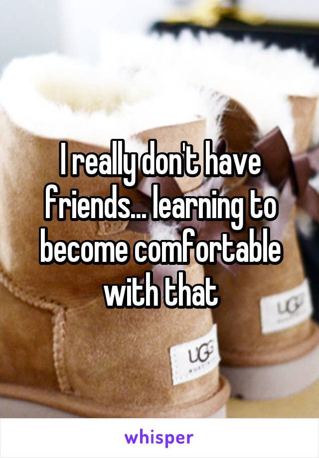 I really don't have friends... learning to become comfortable with that