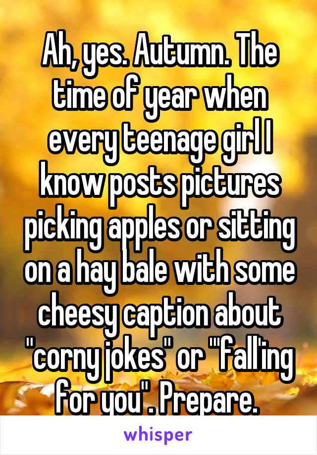 """Ah, yes. Autumn. The time of year when every teenage girl I know posts pictures picking apples or sitting on a hay bale with some cheesy caption about """"corny jokes"""" or """"'fall'ing for you"""". Prepare."""
