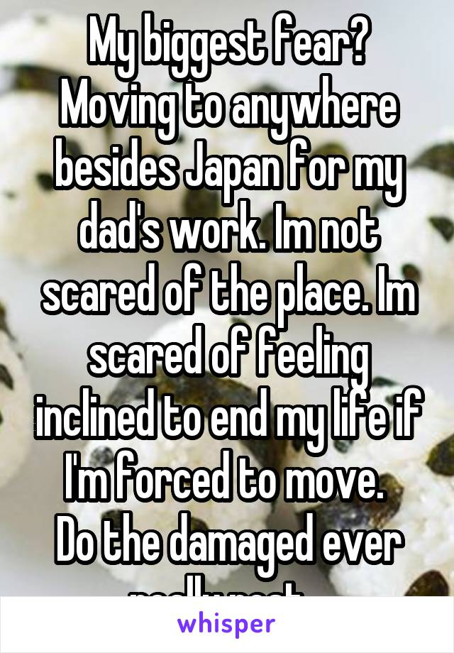 My biggest fear? Moving to anywhere besides Japan for my dad's work. Im not scared of the place. Im scared of feeling inclined to end my life if I'm forced to move.  Do the damaged ever really rest..
