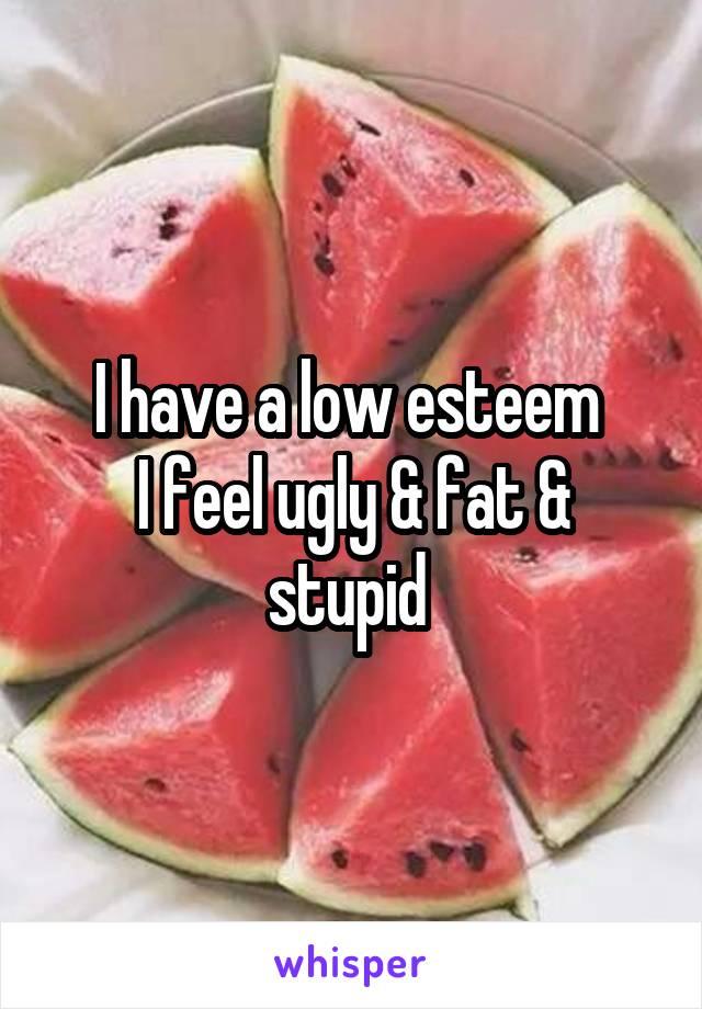 I have a low esteem  I feel ugly & fat & stupid
