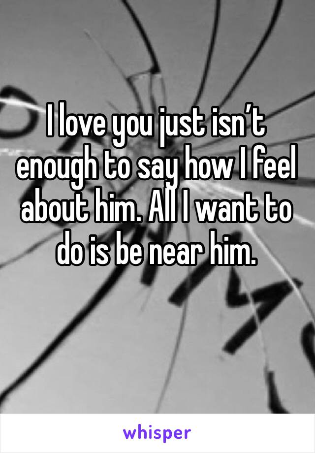 I love you just isn't enough to say how I feel about him. All I want to do is be near him.