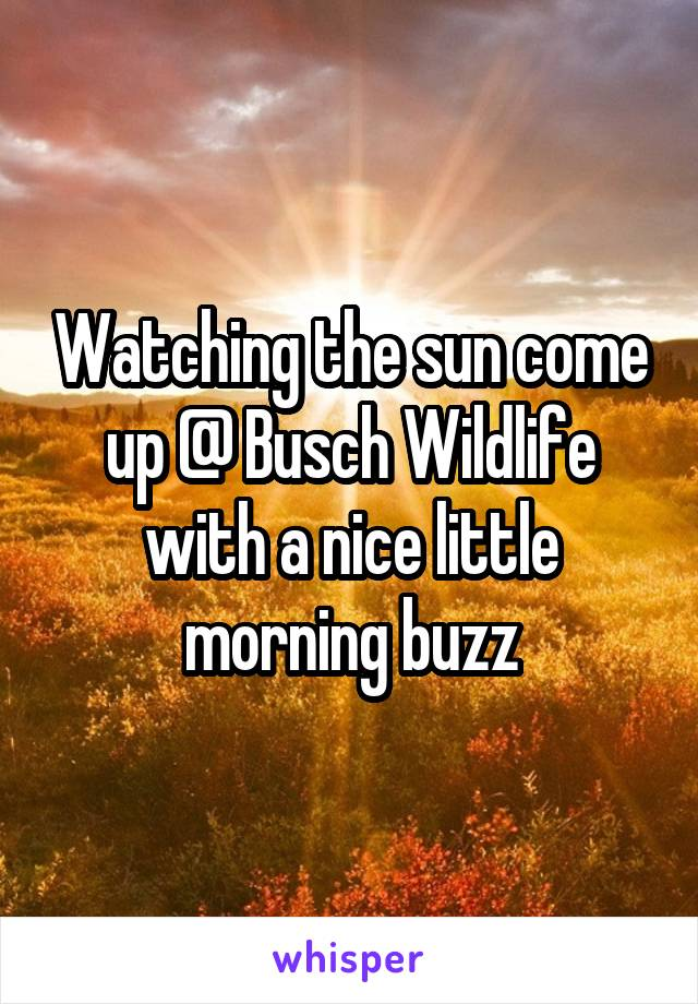 Watching the sun come up @ Busch Wildlife with a nice little morning buzz
