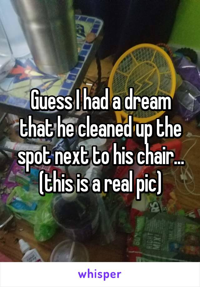 Guess I had a dream that he cleaned up the spot next to his chair... (this is a real pic)