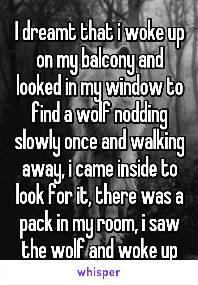 I dreamt that i woke up on my balcony and looked in my window to find a wolf nodding slowly once and walking away, i came inside to look for it, there was a pack in my room, i saw the wolf and woke up