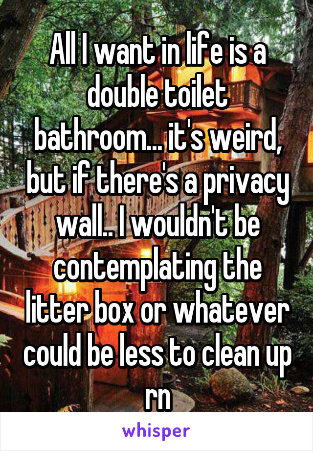 All I want in life is a double toilet bathroom... it's weird, but if there's a privacy wall.. I wouldn't be contemplating the litter box or whatever could be less to clean up rn