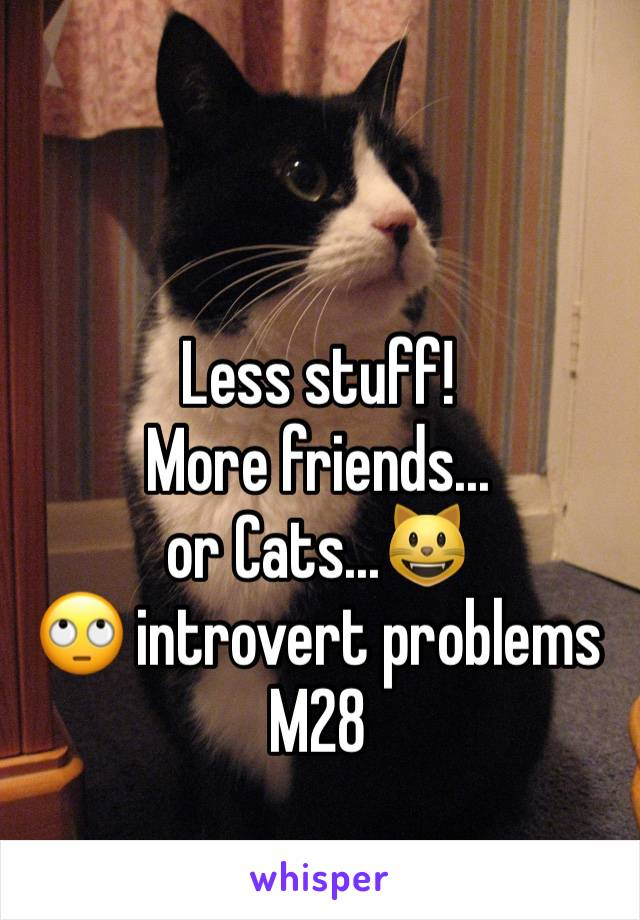 Less stuff! More friends... or Cats...😺 🙄 introvert problems M28