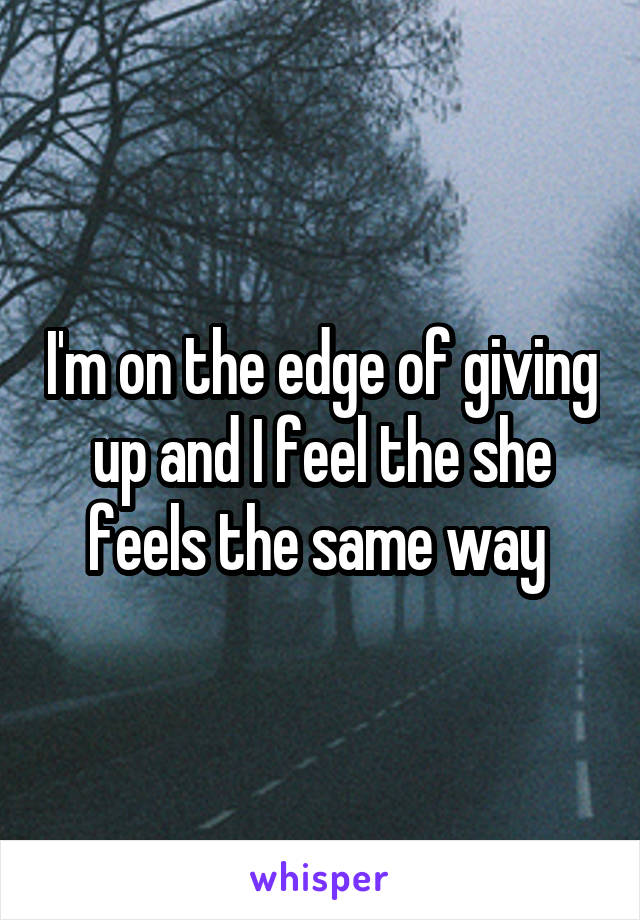 I'm on the edge of giving up and I feel the she feels the same way