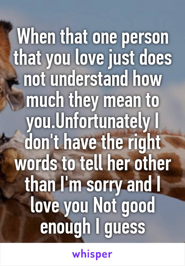 When that one person that you love just does not understand how much they mean to you.Unfortunately I don't have the right words to tell her other than I'm sorry and I love you Not good enough I guess