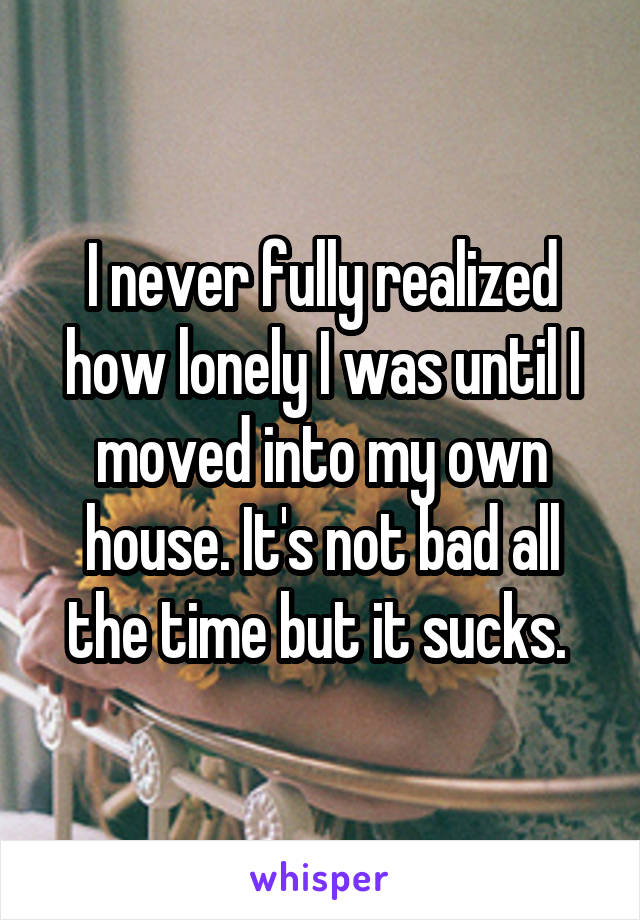 I never fully realized how lonely I was until I moved into my own house. It's not bad all the time but it sucks.