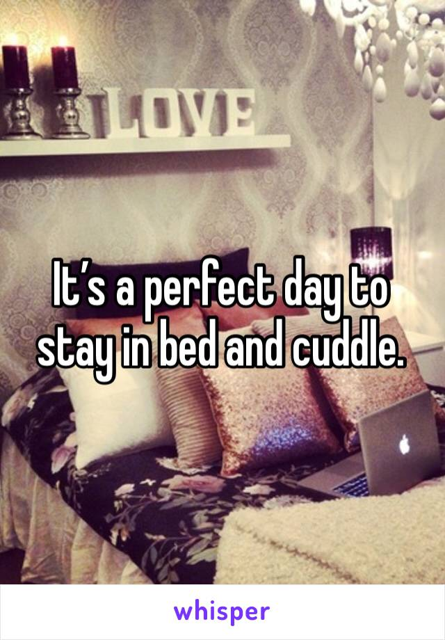 It's a perfect day to stay in bed and cuddle.