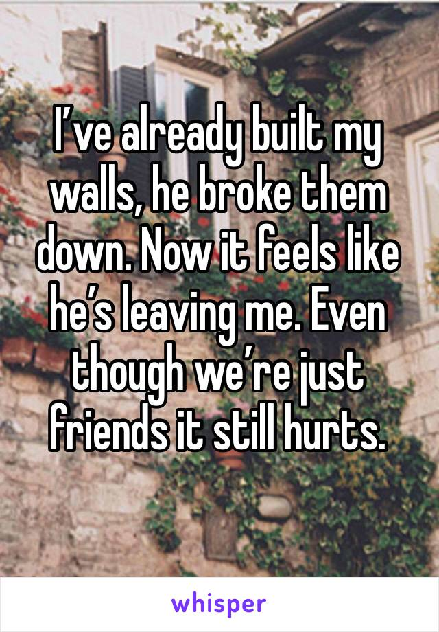 I've already built my walls, he broke them down. Now it feels like he's leaving me. Even though we're just friends it still hurts.