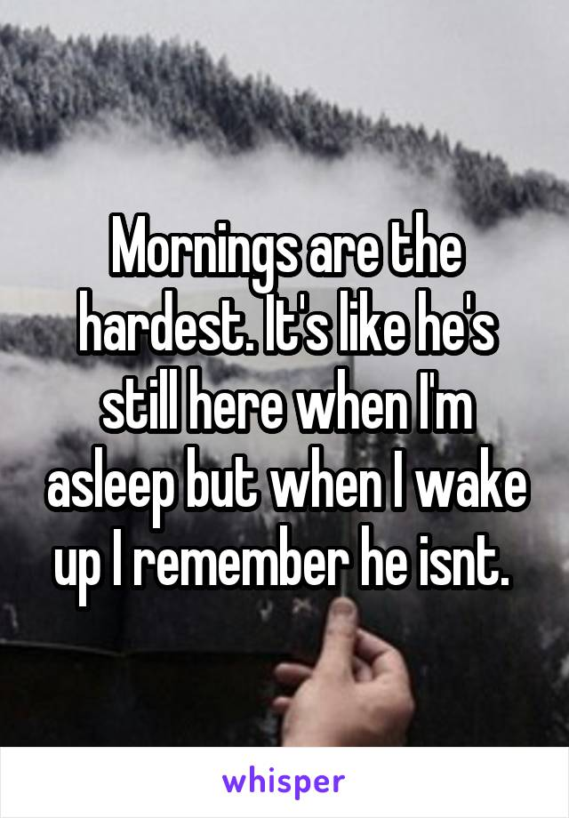 Mornings are the hardest. It's like he's still here when I'm asleep but when I wake up I remember he isnt.