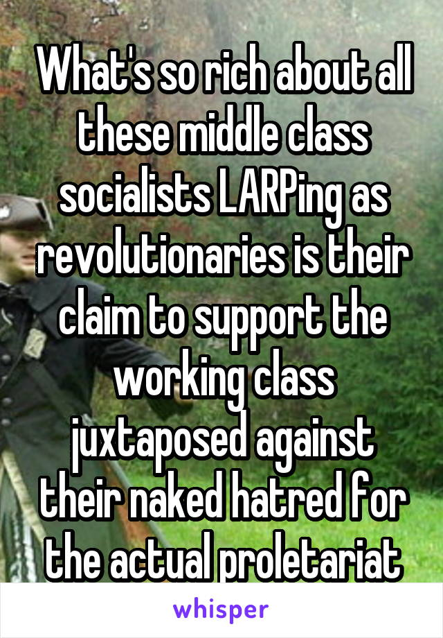 What's so rich about all these middle class socialists LARPing as revolutionaries is their claim to support the working class juxtaposed against their naked hatred for the actual proletariat