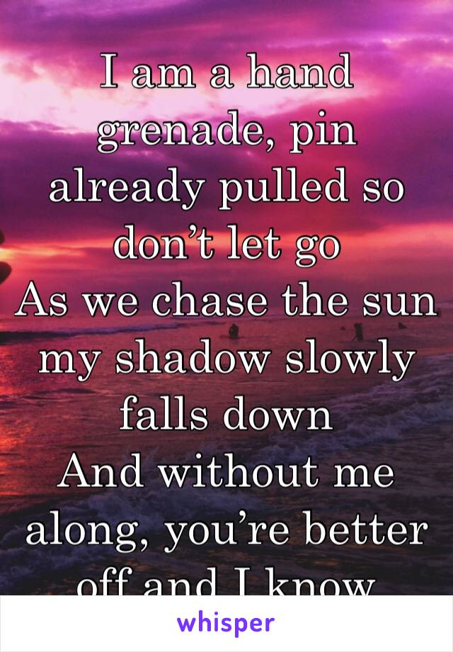 I am a hand grenade, pin already pulled so don't let go As we chase the sun my shadow slowly falls down And without me along, you're better off and I know
