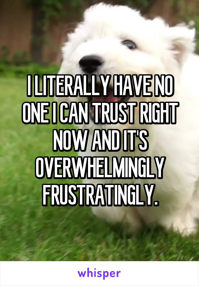 I LITERALLY HAVE NO ONE I CAN TRUST RIGHT NOW AND IT'S OVERWHELMINGLY FRUSTRATINGLY.