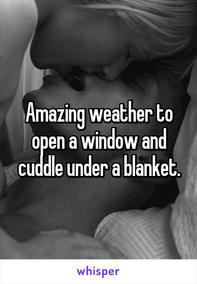 Amazing weather to open a window and cuddle under a blanket.