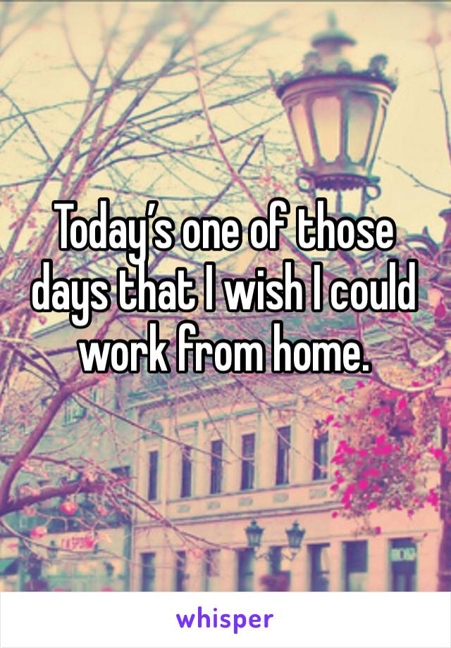 Today's one of those days that I wish I could work from home.
