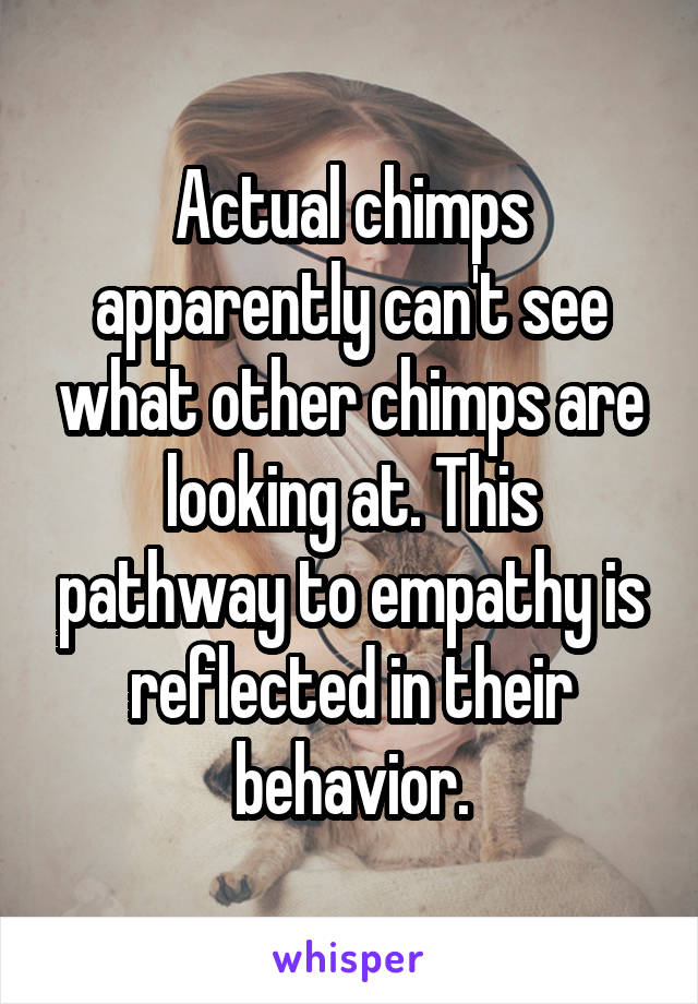 Actual chimps apparently can't see what other chimps are looking at. This pathway to empathy is reflected in their behavior.