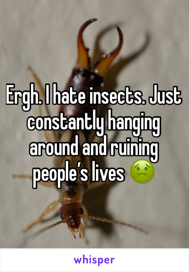 Ergh. I hate insects. Just constantly hanging around and ruining people's lives 🤢