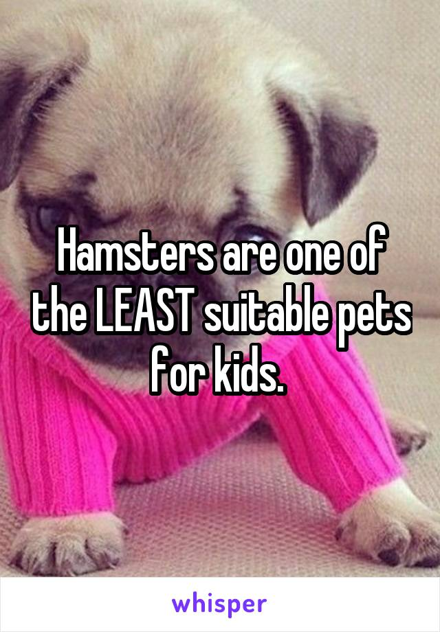 Hamsters are one of the LEAST suitable pets for kids.