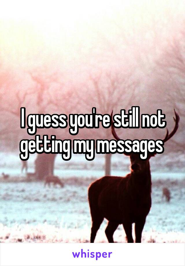 I guess you're still not getting my messages