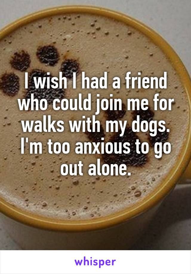 I wish I had a friend who could join me for walks with my dogs. I'm too anxious to go out alone.