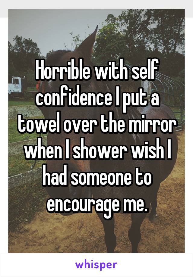 Horrible with self confidence I put a towel over the mirror when I shower wish I had someone to encourage me.