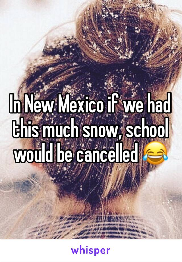 In New Mexico if we had this much snow, school would be cancelled 😂