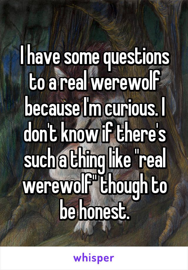 "I have some questions to a real werewolf because I'm curious. I don't know if there's such a thing like ""real werewolf"" though to be honest."