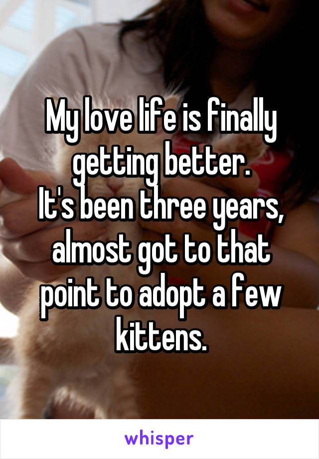 My love life is finally getting better. It's been three years, almost got to that point to adopt a few kittens.