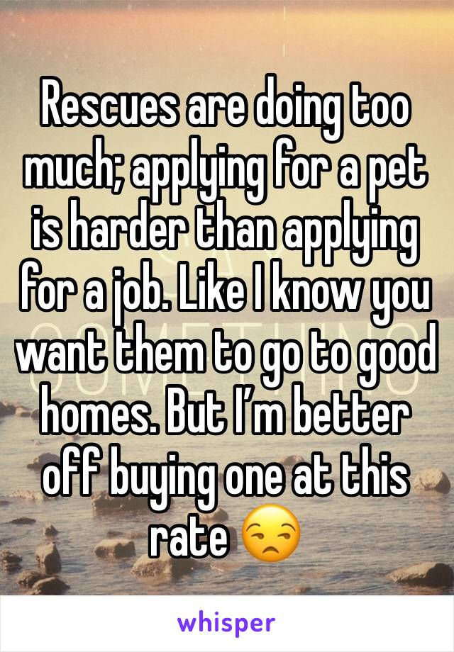 Rescues are doing too much; applying for a pet is harder than applying for a job. Like I know you want them to go to good homes. But I'm better off buying one at this rate 😒