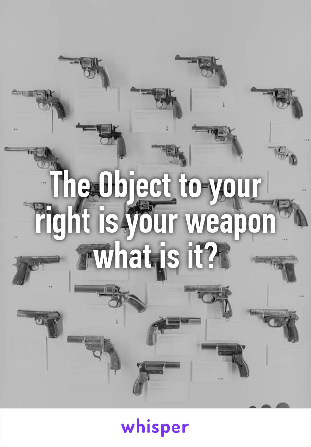 The Object to your right is your weapon what is it?