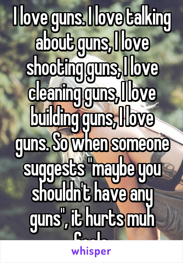 "I love guns. I love talking about guns, I love shooting guns, I love cleaning guns, I love building guns, I love guns. So when someone suggests ""maybe you shouldn't have any guns"", it hurts muh feels."
