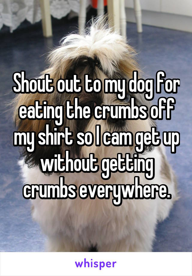 Shout out to my dog for eating the crumbs off my shirt so I cam get up without getting crumbs everywhere.