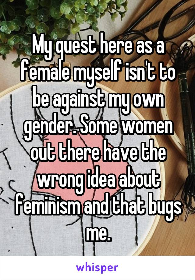 My quest here as a female myself isn't to be against my own gender. Some women out there have the wrong idea about feminism and that bugs me.