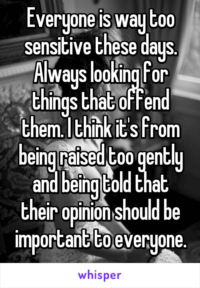 Everyone is way too sensitive these days. Always looking for things that offend them. I think it's from being raised too gently and being told that their opinion should be important to everyone.