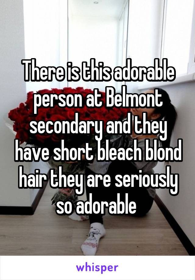 There is this adorable person at Belmont secondary and they have short bleach blond hair they are seriously so adorable