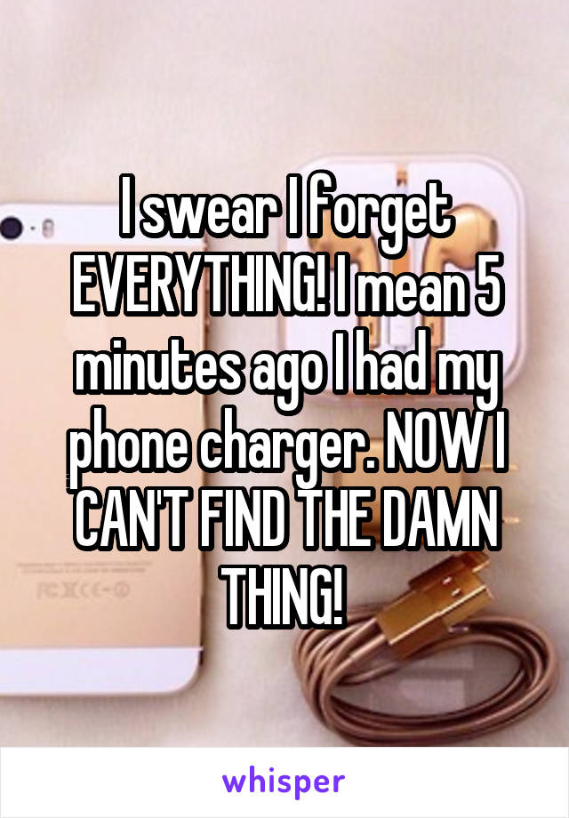 I swear I forget EVERYTHING! I mean 5 minutes ago I had my phone charger. NOW I CAN'T FIND THE DAMN THING!
