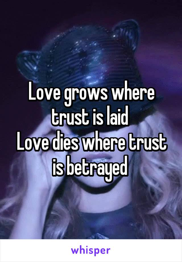 Love grows where trust is laid  Love dies where trust is betrayed