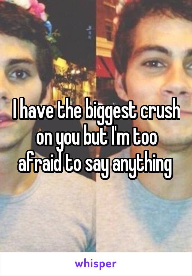 I have the biggest crush on you but I'm too afraid to say anything